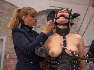 ponygirl get dressed by her mistress